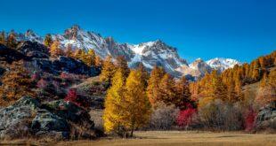 Dove vedere il foliage in Italia